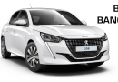 Blanc Banquise Peugeot 208 private lease